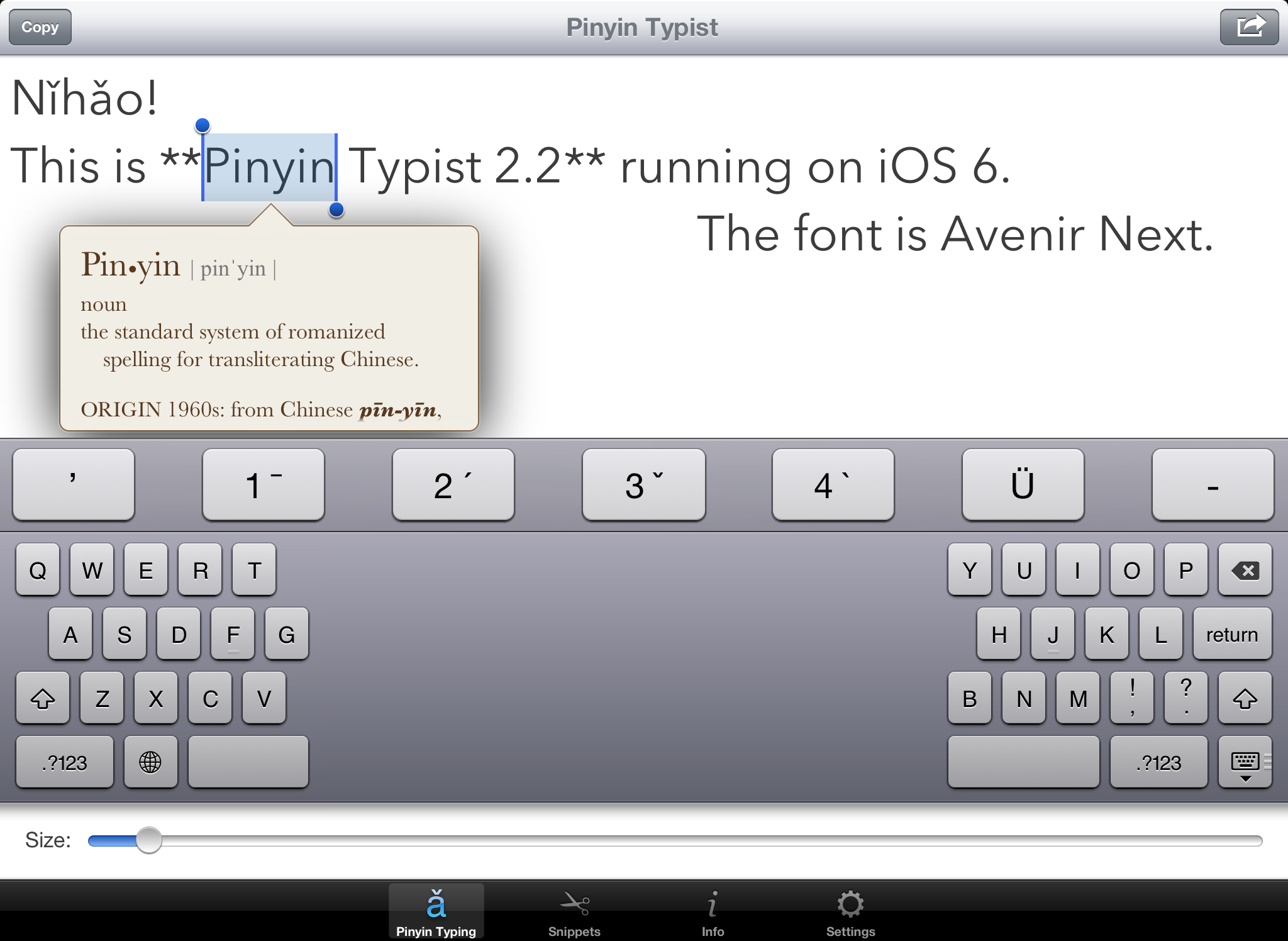 Pinyin Typist—iPad Screenshots